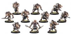 Minions Farrow Brigands Commandos PLASTIC (1 leader 9 grunts)
